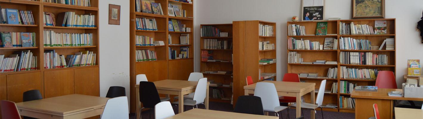 Naše školní knihovna